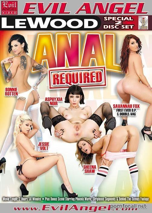 Anal Required (2013) DVDRip [Split Scenes]